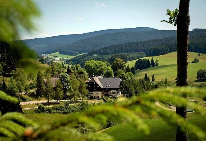 דירות Tannzapfenland בטיטיזה