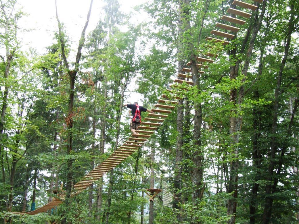 פארק Action Forest