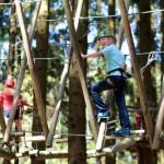 פארק החבלים אקשן פורסטAction Forest
