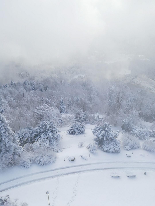שלג בדצמבר