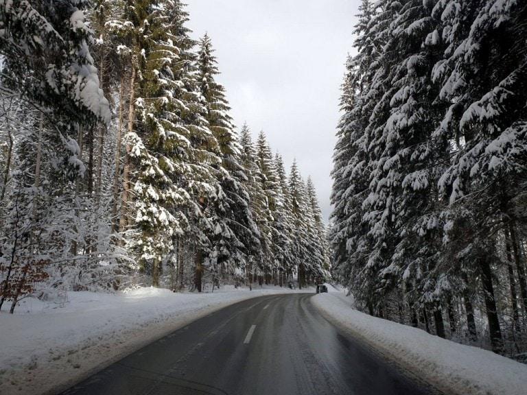 נוסעים לראות שלג